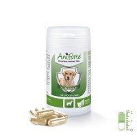 Nahrungsergänzung AniForte Zeckenschild natürlicher Zeckenschutz - Naturprodukt für große Hunde 35-50kg