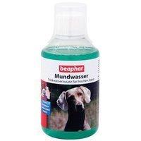 Nahrungsergänzung Beaphar Dog-A-Dent Mundwasser