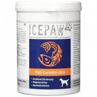 Nahrungsergänzung ICEPAW Red Carnitin Plus Pulver