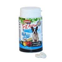 Nahrungsergänzung Panzi FitActive FitActive Fit-a-Calci Plus