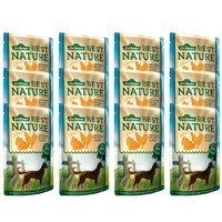 Nassfutter Dehner Best Nature Hundefutter Adult Geflügel und Ananas mit Reis