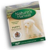 Nassfutter Natures Harvest Puppy Chicken
