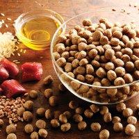 Trockenfutter alsa nature Nieren-Schonkost