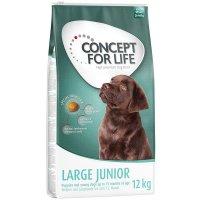 Trockenfutter Concept for Life Large Junior