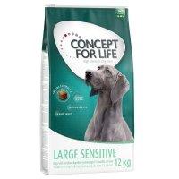 Trockenfutter Concept for Life Large Sensitive