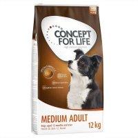 Trockenfutter Concept for Life Medium Adult