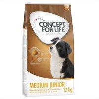 Trockenfutter Concept for Life Medium Junior