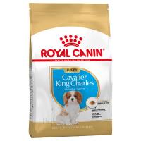 Trockenfutter Royal Canin Cavalier King Charles Puppy