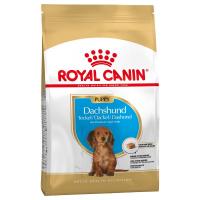 Trockenfutter Royal Canin Dachshund Puppy