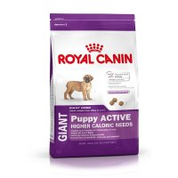 Trockenfutter Royal Canin Giant Active Puppy