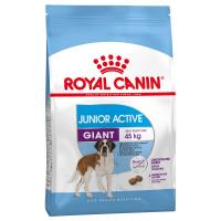 Trockenfutter Royal Canin Giant Junior Active
