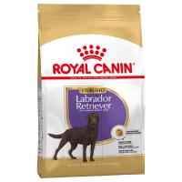 Trockenfutter Royal Canin Labrador Retriever Adult Sterilised