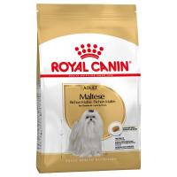 Trockenfutter Royal Canin Maltese Adult