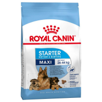 Trockenfutter Royal Canin Maxi Starter Mother & Babydog