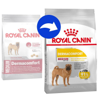 Trockenfutter Royal Canin Medium Dermacomfort