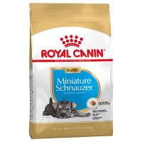Trockenfutter Royal Canin Miniature Schnauzer Puppy