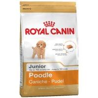 Trockenfutter Royal Canin Poodle Junior