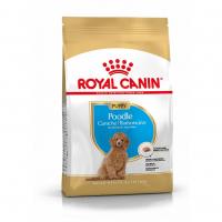 Trockenfutter Royal Canin Poodle Puppy