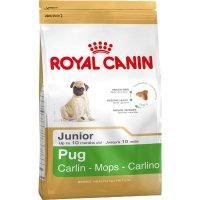 Trockenfutter Royal Canin Pug Junior