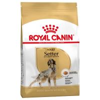 Trockenfutter Royal Canin Setter Adult